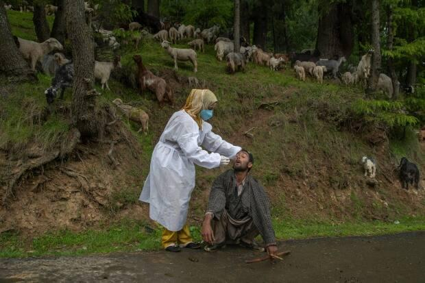 A Kashmiri doctor in a protective suit takes a nasal swab sample of a nomad to test for COVID-19 in Budgam, southwest of Srinagar, Indian controlled Kashmir, Tuesday, May 18, 2021.