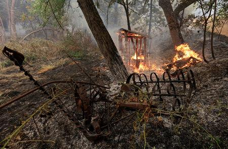 Carr Fire in Northern California 20 percent contained