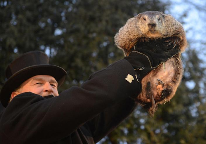 <p>Handler John Griffiths introduces Punxsutawney Phil to the crowd at Gobbler's Knob on the 131st Groundhog Day in Punxsutawney, Pa., Feb. 2, 2017. (REUTERS/Alan Freed) </p>