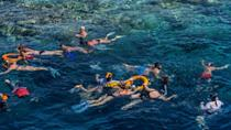 Sharm El-Sheikh hosted a United Nations agencies conference in 2018 that called for the protection of coral reefs 'before it's too late' (AFP/Khaled DESOUKI)