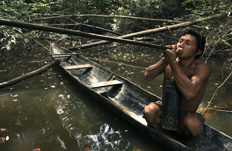 An Indian Makuna tribesman living in the Colombian Amazon jungle goes hunting in November 2004 (AFP Photo/Eric Feferberg)