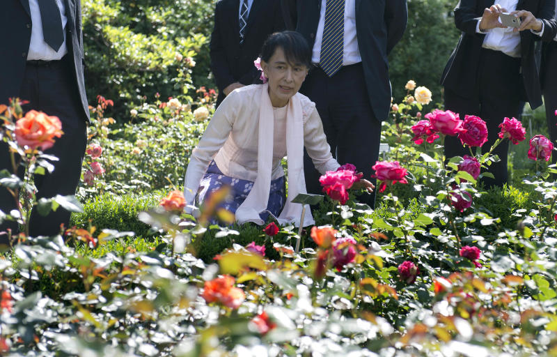 Myanmar opposition leader Aung San Suu Kyi admires a bed of roses during a sightseeing tour through the city of Bern, Switzerland, Friday, June 15, 2012. Suu Kyi resumed her European tour Friday, after a brief bout of illness prompted by exhaustion forced her to cancel a gala dinner the night before. (AP Photo/Lukas Lehmann, Pool)