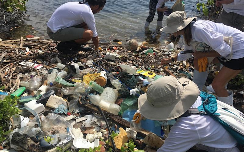 Plastic is washed into the ocean where it disintegrates into tiny particles - Sarah Knapton