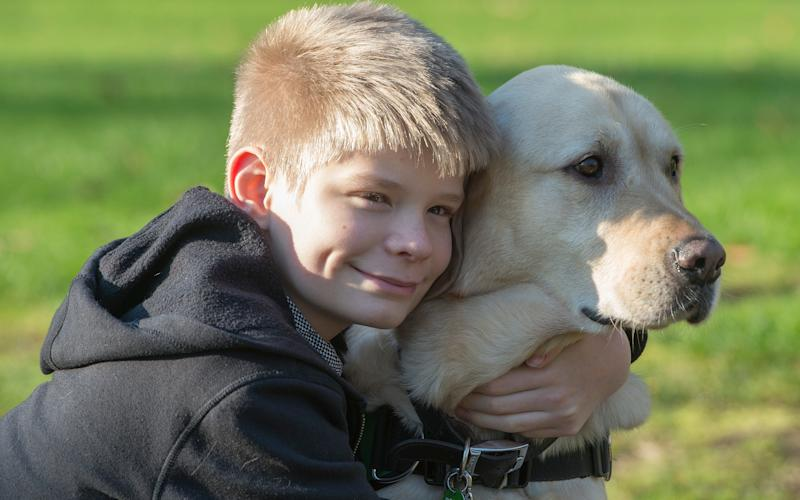 Caddie, the Labrador Retriever assistance dog, and his 13 year old owner Joel Sayer - COPYRIGHT : JULIAN SIMMONDS