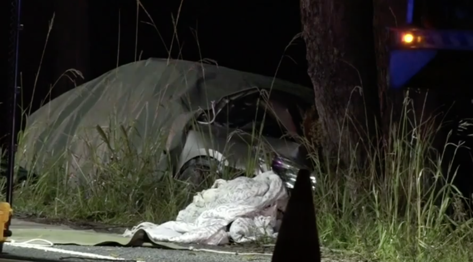The trio died when the Honda Accord hit a tree. Source: Nine News