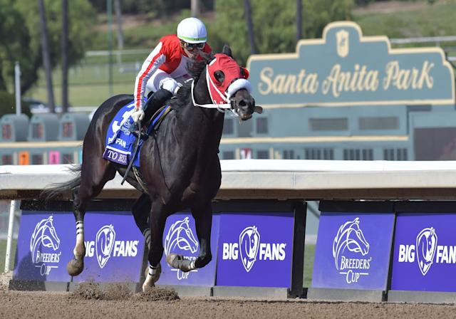 Though 56 horses have died at Santa Anita since July 2018, an investigation by the Los Angeles County district attorney's office found no criminal wrongdoing. (Cynthia Lum/Icon Sportswire/Getty Images)