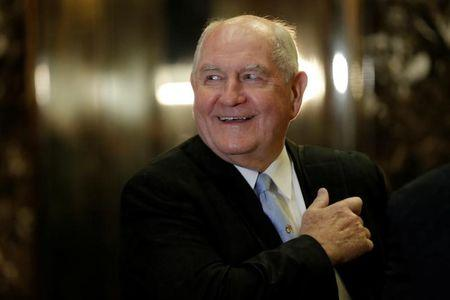 Sonny Perdue tapped as Trump's agriculture secretary