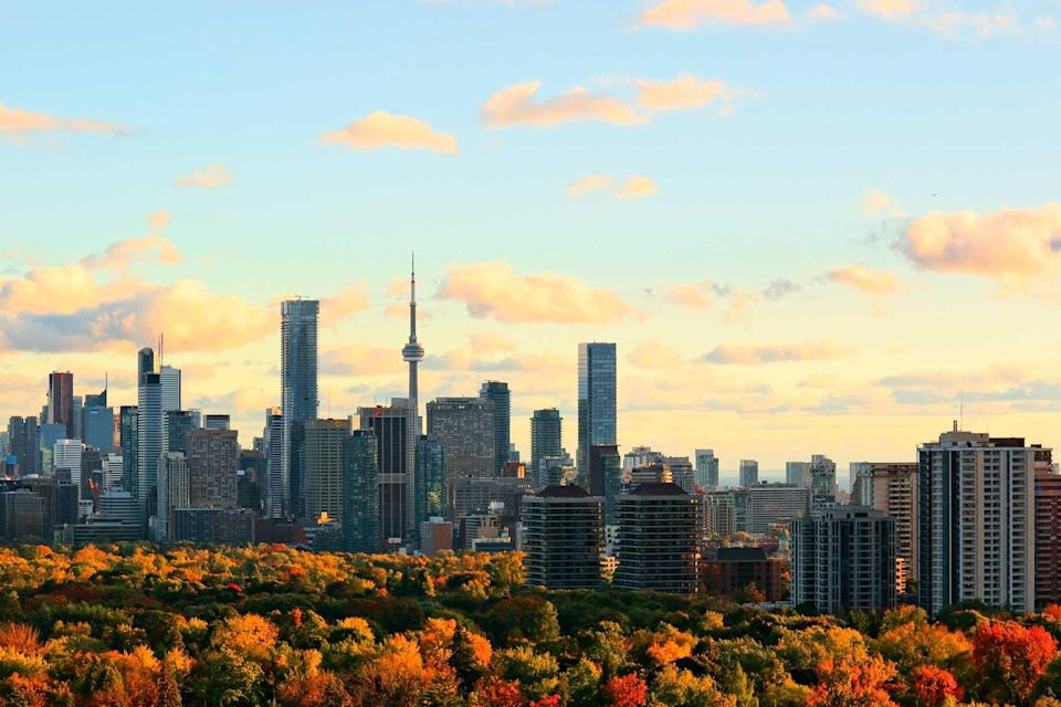 Toronto skyline with downtown, midtown, and urban tree canopy lit by setting sun