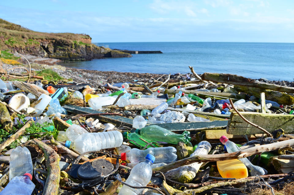 Plastic bottles and other rubbish regularly wash up on Britain's beaches (Education Images/UIG via Getty Images)