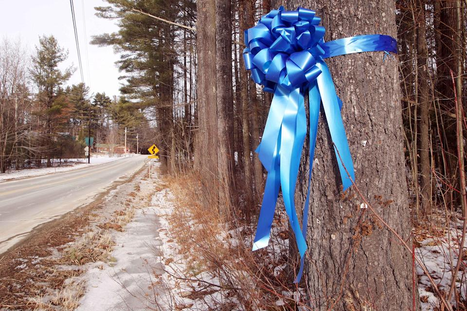 <p>A ribbon hangs at the site where Murray was last seen after a car crash in rural New Hampshire</p>AP