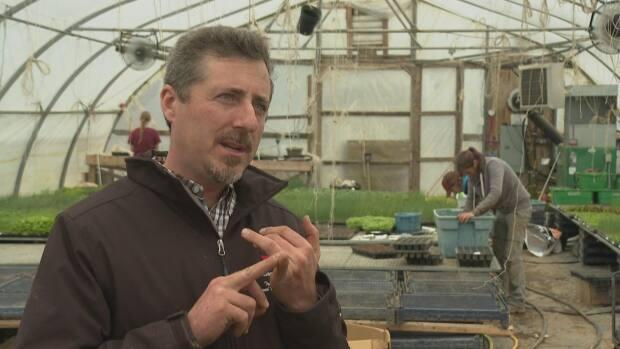 Tim Livingstone, co-owner of Strawberry Hill Farm, said he could have to spend up to $5,000 to have his workers self-isolate upon arriving in New Brunswick.