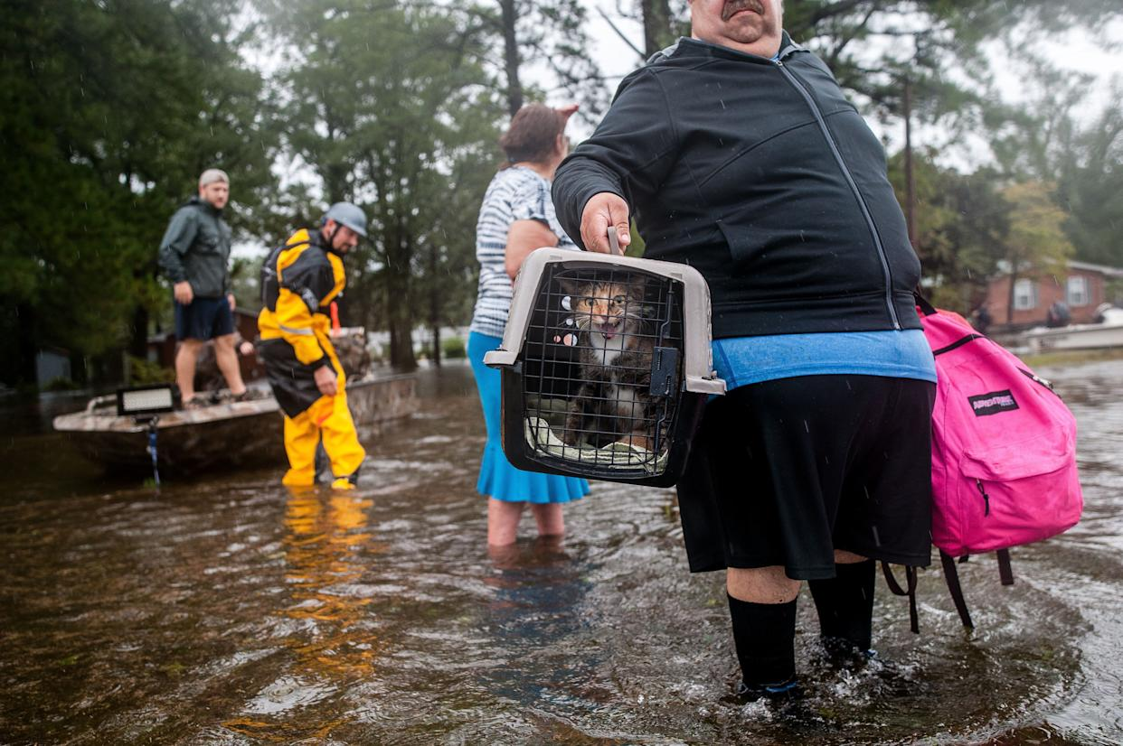 Orlando Collazo holds a pet carrier with his family's cats, Princess and Gizmo, after they were pulled from their flooded home by members of the Cajun Navy in Lumberton, North Carolina, on Sunday. (Photo: Joseph Rushmore for HuffPost)