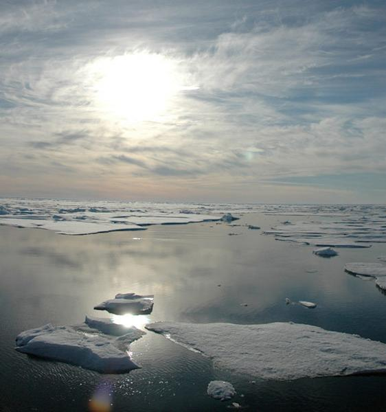 The dramatic loss of Arctic sea ice this summer is just one of the signs global warming has not stopped, scientists say.