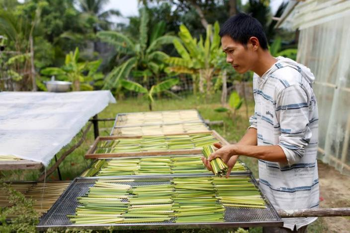 Tran Minh Tien, owner of 3T shop, dries grass straws in front of his house in Long An province