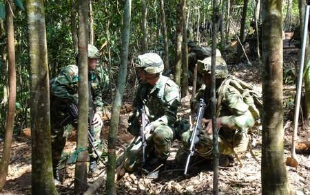 Pressured by U.S., Colombians uproot coca plants, wary of landmines