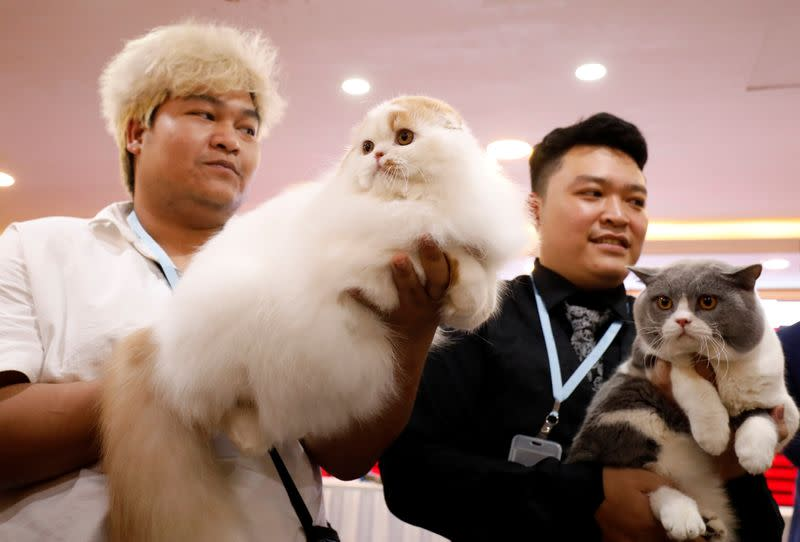 Nguyen Xuan Son of Vietnam and Tawin Prai of Thailand show their cats during the Vietnam's first cat show in Hanoi