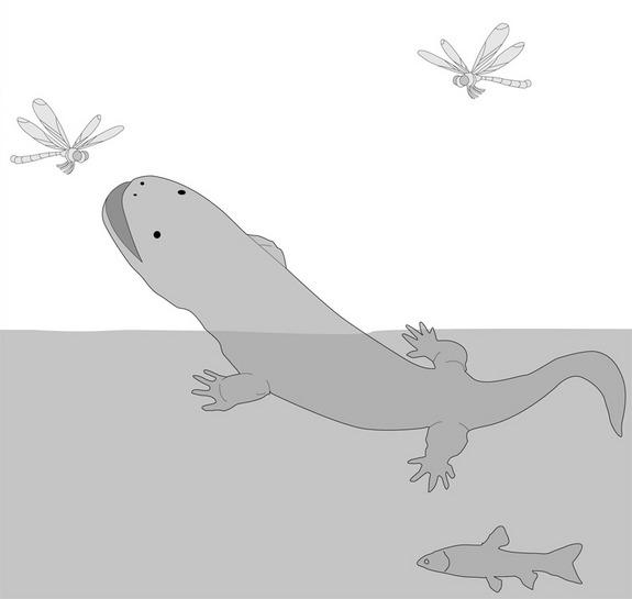 Giant Salamanders Strolled Onto Land Using Long Limbs