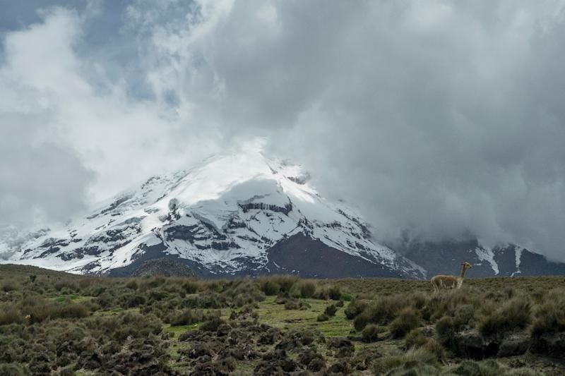 The glacier capping the Chimborazo volcano is receding, and the consequences for the indigenous population living on its slopes are far reaching (AFP Photo/Pablo Cozzaglio)