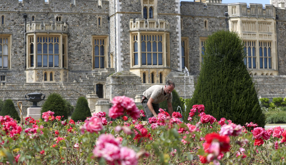 Final preparations are made ahead of Windsor Castle's East Terrace Garden opening to the public for the first time in decades from Saturday. (Photo by Steve Parsons/PA Images via Getty Images)