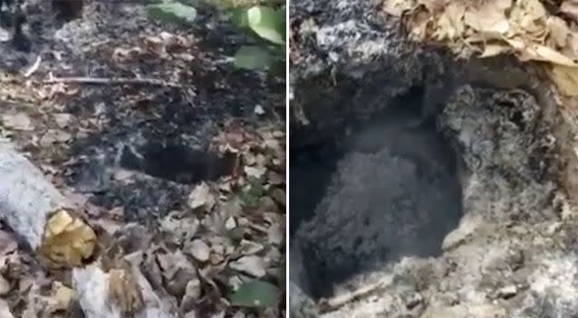 One Cairns resident claimed the explosion was caused by a meteorite that landed in bushland. Source: John Romanov
