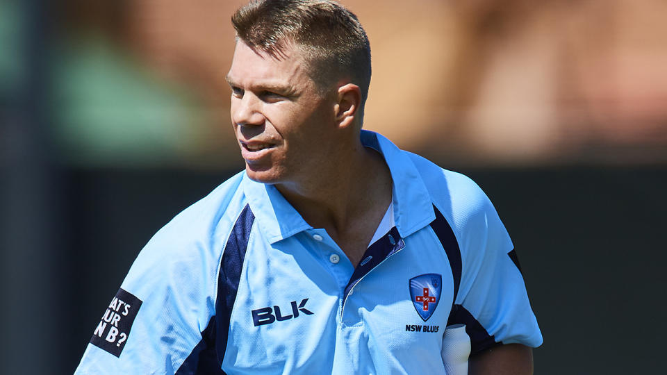 David Warner is set to rejoin NSW for the Marsh Cup after rehabbing from injury. (Photo by Brett Hemmings/Getty Images)
