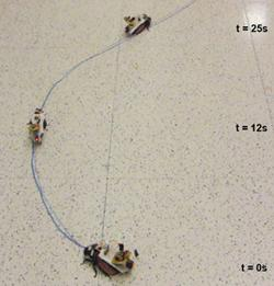 Researchers were able to precisely steer the roaches along a curved line.