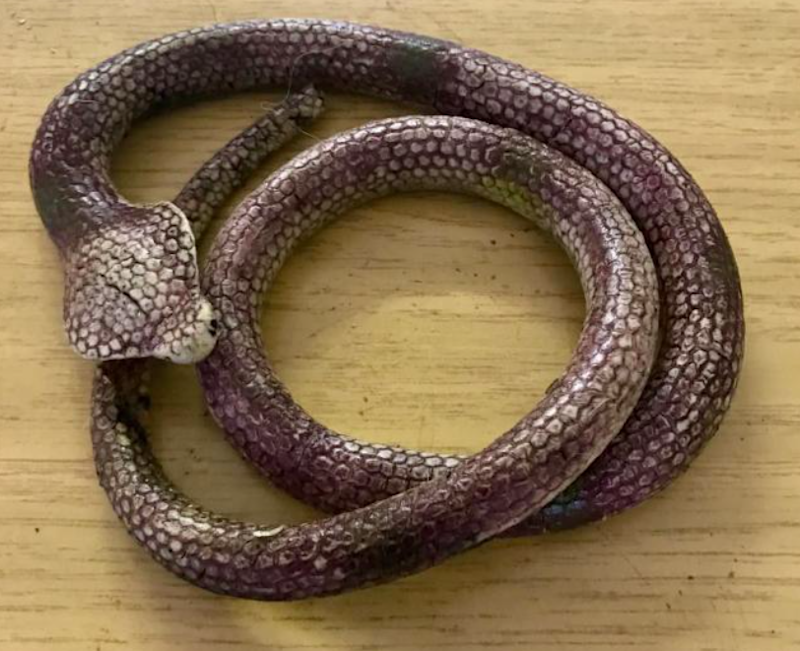 A rubber snake that a person mistook for a real snake in the UK