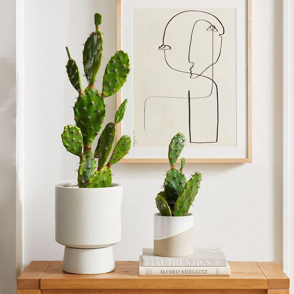 <p>This <span>Faux Potted Flat Cacti</span> ($60 - $150) has a nice visual effect, and it'll look good on any surface.</p>