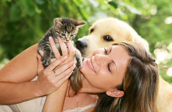 Dog People vs. Cat People: Who's More Outgoing? More Intelligent?