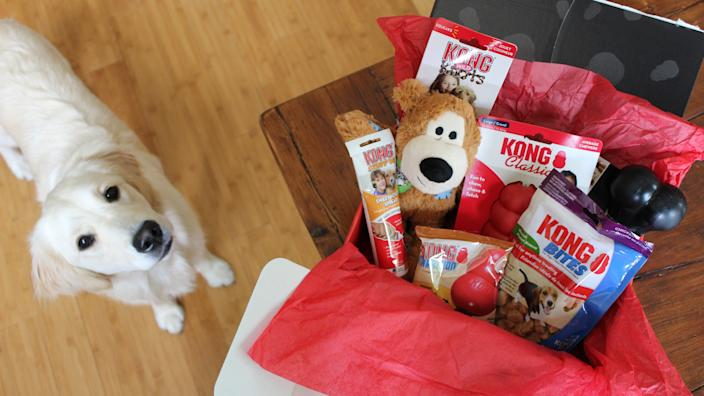 Kong makes our favorite dog products on the market.