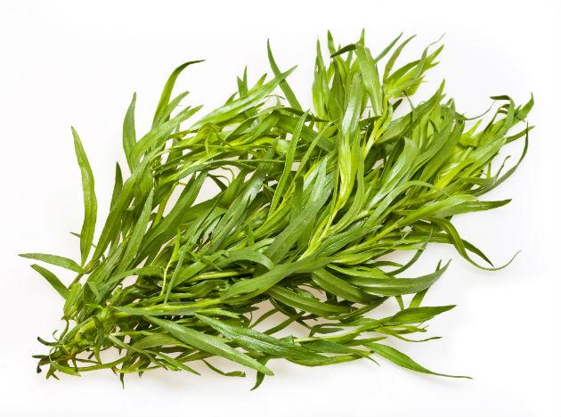 <b>Tarragon </b><br>You can use this herb, a staple in French cooking, in place of salt in marinades and salad dressings. Plus, tarragon lends a sweet, licorice-like flavor to bland foods. <br><b>Eat more</b> Rub 2 tbsp dried tarragon on chicken before baking or grilling. Or make a tasty dip by mixing 1 tsp chopped fresh tarragon into 4 oz lowfat plain yogurt and 1 tsp Dijon mustard, recommends Jacquelyn Buchanan, director of culinary development at Laura Chenel's Chèvre, a fromagerie in Sonoma, California.