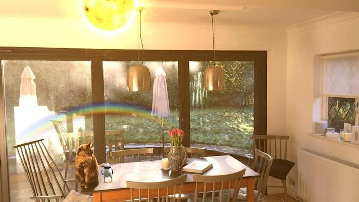 Rare Puffin, Marvellous Rainbow and Solar Friend in the kitchen