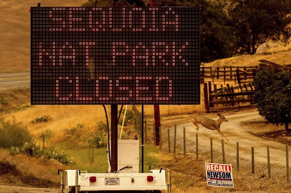 A sign announces the closure of Sequoia national park, where the KNP Complex fires are burning.