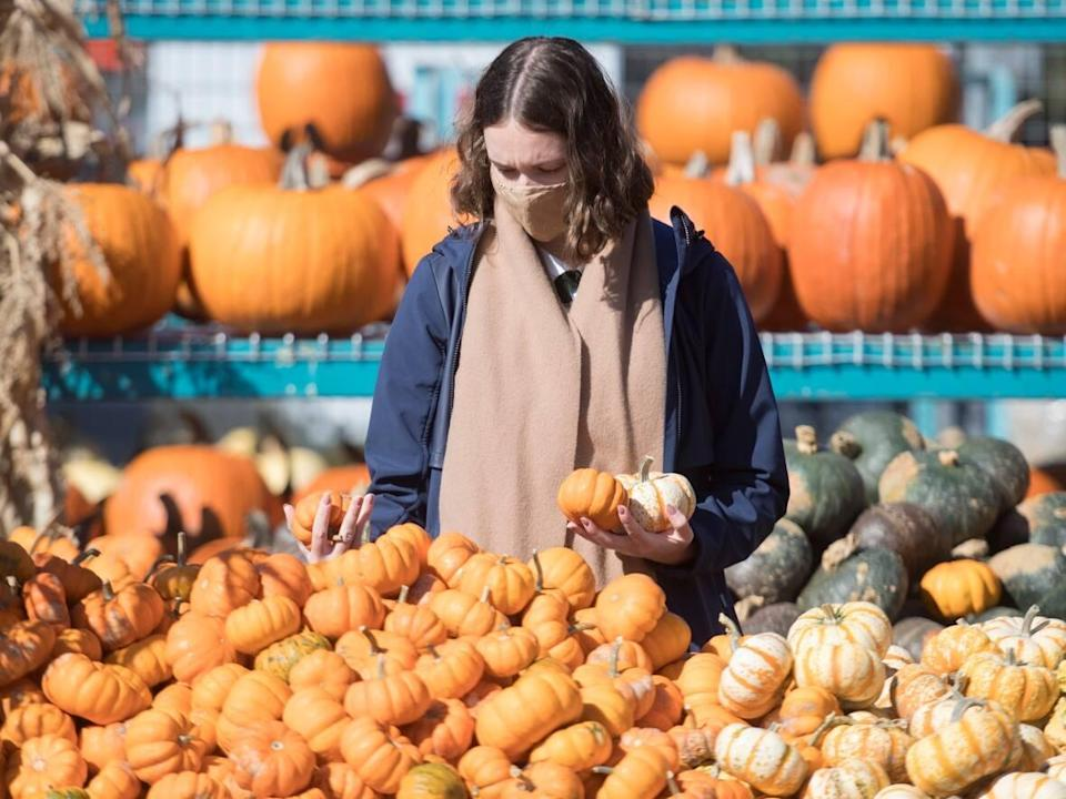 Some public services around Montrealare closed or operatingon different hours this Thanksgiving Monday. (The Canadian Press - image credit)