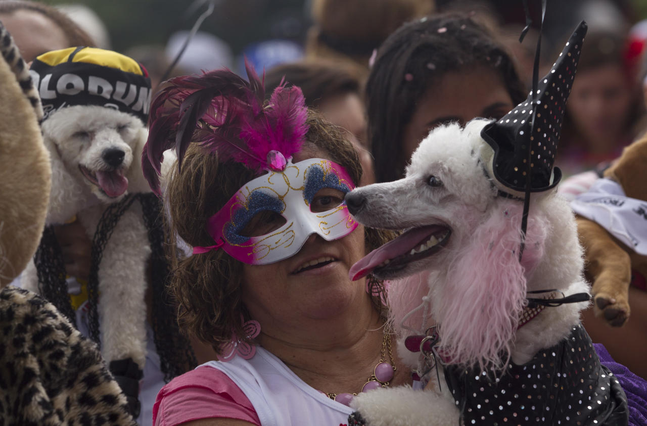 "A woman carries her disguised dog during the ""Blocao"" dog carnival parade in Rio de Janeiro, Brazil, Sunday, Feb. 3, 2013. According to Rio's tourism office, Rio's street Carnival this year will consist of 492 block parties, attended by an estimated five million Carnival enthusiasts. (AP Photo/Silvia Izquierdo)"