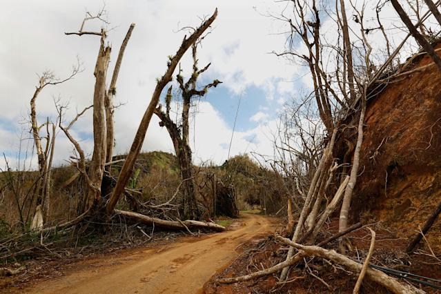 The mountain town of Juyaya, P.R., is one of the most remote on the island, and help was slow to arrive because of roads blocked by landslides and fallen trees. This is the road from Ciales to Jayuya. (Photo: Carolyn Cole/Los Angeles Times via Getty Images)