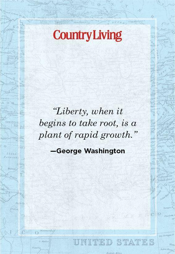 """<p>""""Liberty, when it begins to take root, is a plant of rapid growth.""""</p>"""