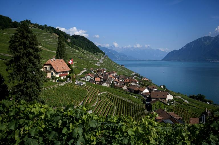 Swiss wines considered niche or premium are being promoted abroad in the hope of Swiss labels appearing on menus in the world's top restaurants (AFP Photo/FABRICE COFFRINI)