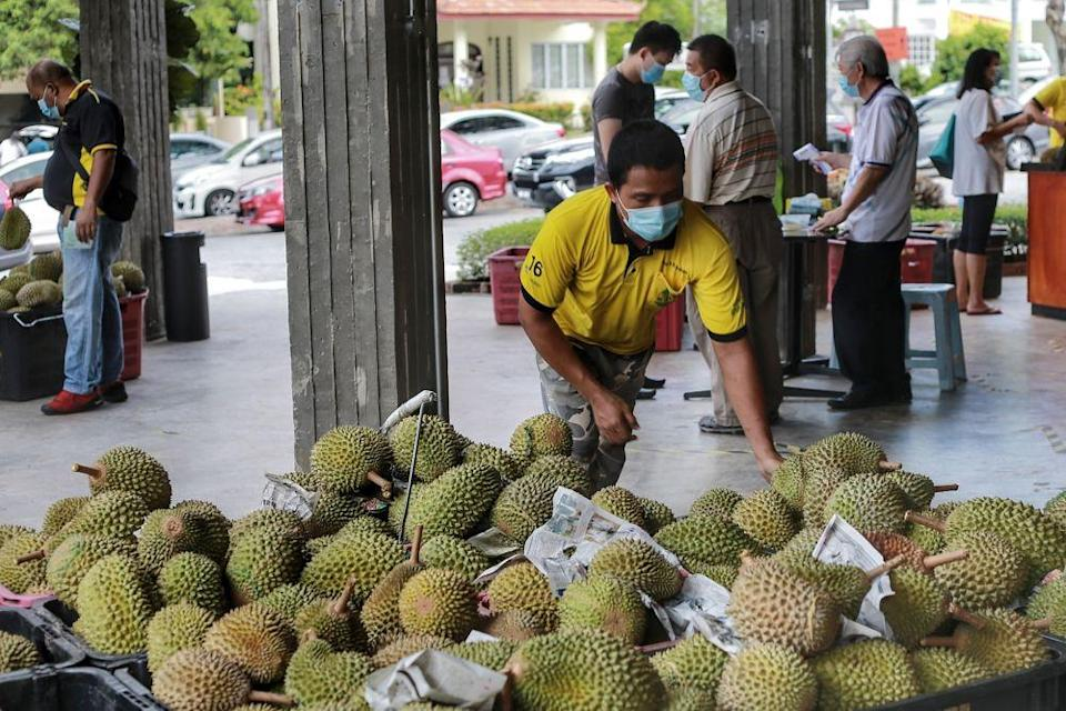 A worker sorts out durians at a shop in Petaling Jaya June 8, 2020. — Picture by Ahmad Zamzahuri