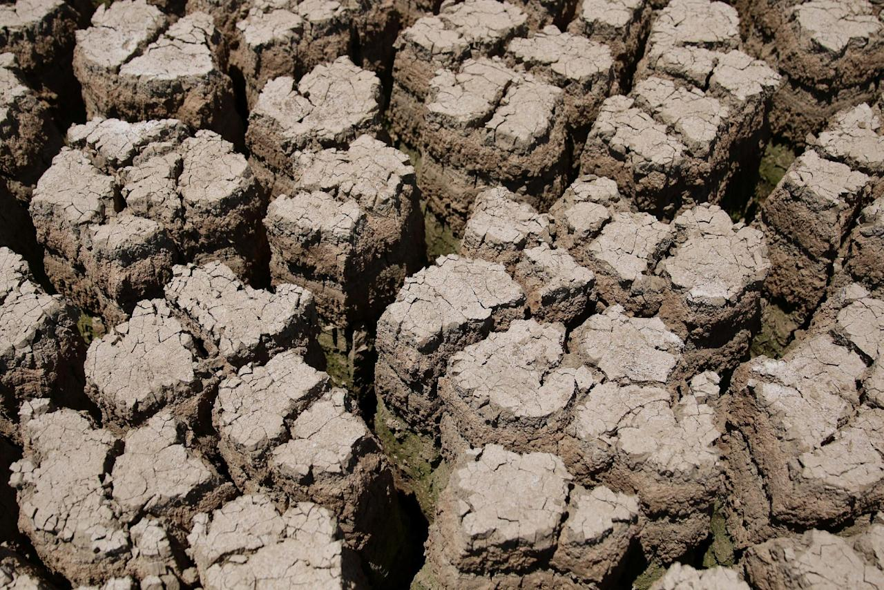 The dried cracked bed of the Deraa dam is pictured in Deraa Governorate, Syria July 23, 2016. REUTERS/Alaa Al-Faqir