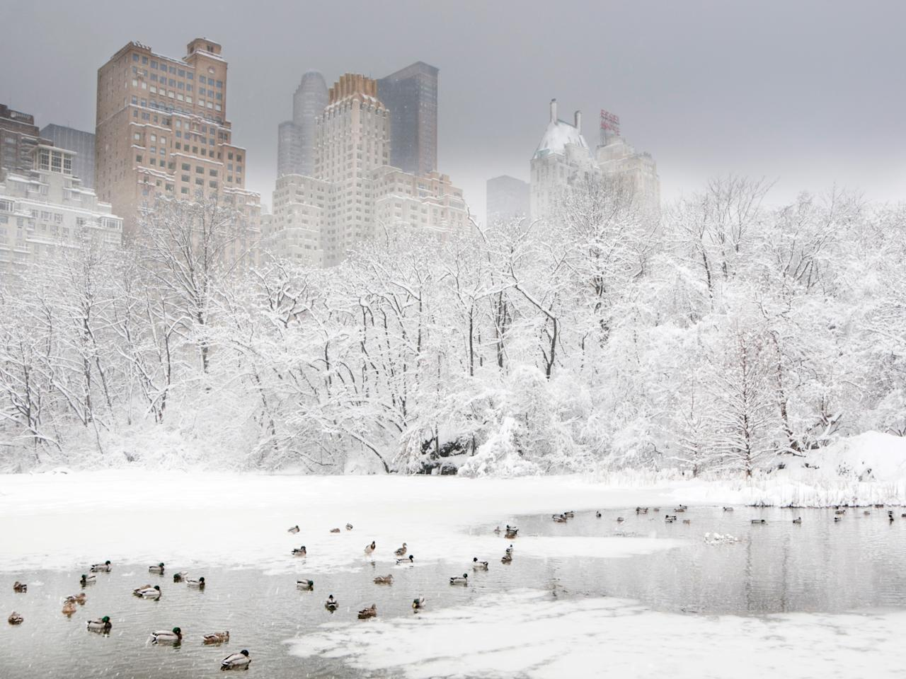 """<a rel=""""nofollow"""" href=""""https://www.cntraveler.com/reports/the-best-of-new-york-city?mbid=synd_yahoo_rss"""">New York City</a> is pretty magical every month of the year, and that certainly holds true during the winter (<a rel=""""nofollow"""" href=""""https://www.cntraveler.com/story/thanks-to-winter-storm-grayson-you-should-probably-change-your-flight?mbid=synd_yahoo_rss"""">bomb cyclones</a> notwithstanding). The city has tons of indoor activities to keep you busy, whether it's watching basketball games at Barclays, visiting the butterfly conservatory at the American Museum of Natural History (open December through May), or sipping hot chocolate at <a rel=""""nofollow"""" href=""""https://www.cntraveler.com/galleries/2016-03-23/where-to-find-the-best-chocolate-in-the-world/?mbid=synd_yahoo_rss"""">Jacques Torres</a>. And nothing screams """"winter wonderland"""" like Central Park under a fresh layer of snow, with carriage rides, ice skating rinks, and idyllic paths and bridges just begging to be <a rel=""""nofollow"""" href=""""https://www.cntraveler.com/story/the-most-instagrammed-cities-of-2017?mbid=synd_yahoo_rss"""">Instagrammed</a>. Bonus: You can find much more affordable hotel rates after the holiday rush dies down."""