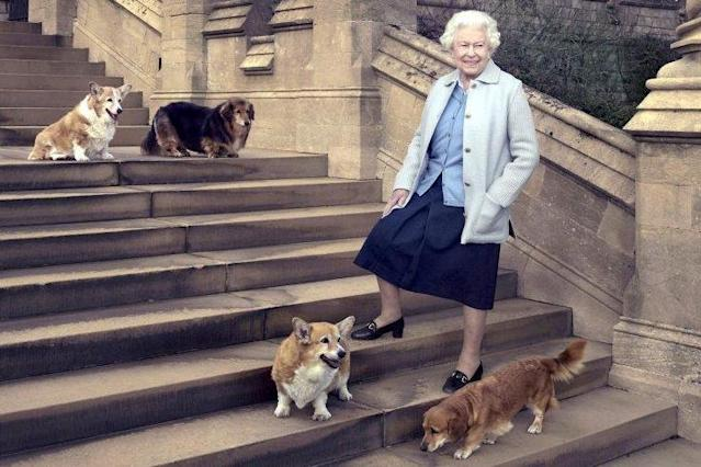 The Queen pictured on her 90th birthday, Willow at the top of the steps on the left: PA