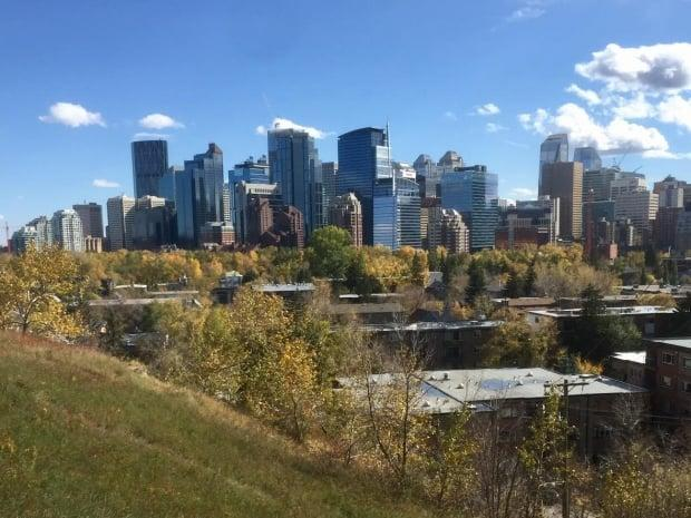 The Guidebook for Great Communities is supposed to lay out common planning principles to guide policy decisions and shape future local area plans for Calgary's communities. (John Gibson/CBC - image credit)