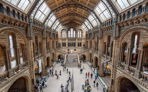 Natural History Museum - Credit: TIM GRIST PHOTOGRAPHY