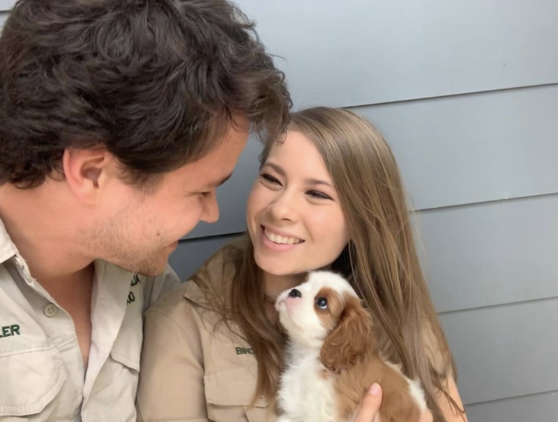 Bindi Irwin and Chandler Powell and their new puppy named Piggy.