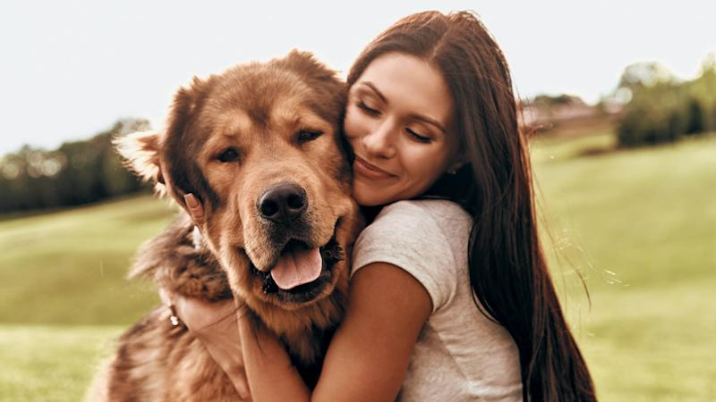 25 Best Animal Charities to Donate to on World Animal Day 2018