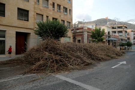 Reeds removed from the Segura river are seen on a street in Orihuela