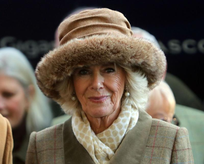 Camilla was asked about the royal engagement during an event at Ascot Racecourse. Photo: Getty