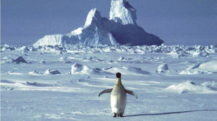 global warming, high temperature Antarctic, Antarctic warmest temperature, Antarctic warming, Antarctic hottest month