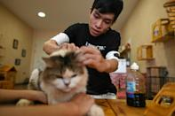 Cafe owner Nguyen Thanh Binh tends to a rescued cat